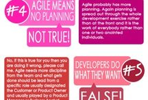 AGILE / Agile Methodology - Infographics (not only)