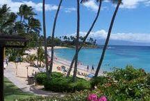Favorite Places & Spaces / Hawaii Catalina Island Santa Barbara San Diego