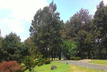 Landscape..... / My Photo