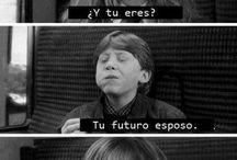 memes de Harry