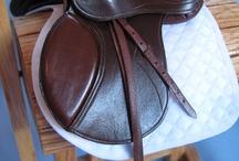 Breyer/Model horse 101 / by Emma Fox