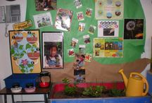 Plant Unit / Plant thematic fun for kindergarten math, reading, social studies, art, music, writing, and science.