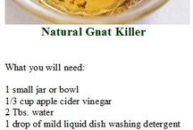natural insect repellant/killers