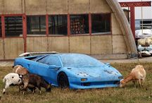 Forgotten things / Cars, places...