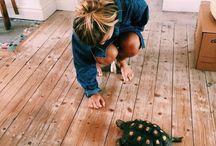 • turtles