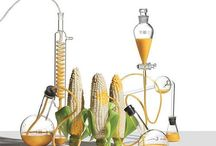 GMOChallenge