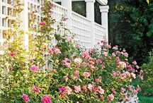Gardens / Elegant