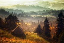 Ces Maisons Ont Eu La Chance De Se Perdre Dans La Forêt