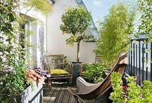 Terras + Balkon