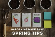 Garden Planning / We think gardening should be relaxing. Here are preparation tips to make efforts flourish. / by Post-it® Brand