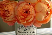Coral and Tangerine Wedding Ideas / wedding ideas inspired by coral/tangerine tones