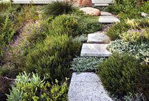 *   Gardens