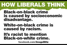 Idiotic Liberal Board!