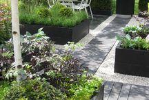 Trädgård / Trädgårdstips