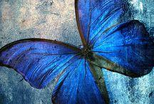 Μπλέ - Blue
