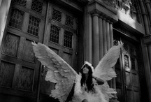 grow your wings and fly