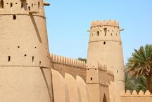 Emirati Arabi / Dove si fa evidente il contrasto tra antica cultura beduina e sviluppo economico si respira ancora di più la magia.