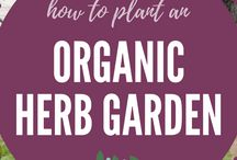 Herbs garden / Ideas and inspiration for growing and keeping herbs in your garden or outdoor space.