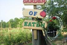School - Community Gardens