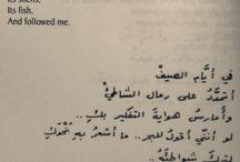 nizar qabbany