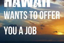 job at hawai