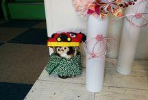 Dressing of raccoon dog. 信楽焼 タヌキ マンスリー・コスプレ集 raccoon dog