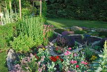 Gardens of Birtle, Manitoba / Passionate gardeners in this small zone 2 town create gardens of every size and description.
