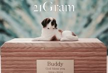 21Gram / about 21gram