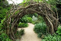 Garden inspiration, nature, eco