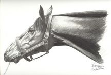 Race Horses In Art 04B- Notable 20th Century American Raced Colts And Geldings / Horses born up from 1970 to 1999