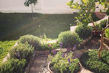 My own garden / My little garden, some inspired by Pinterest. A growing work in progress