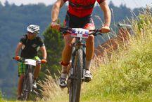 biebergrund BIKE 6.3 / biebergrund BIKE 6.3 - Mountainbike Rennen über 3 und 6 Stunden in Biebergemünd-Roßbach