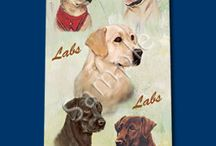 Mixed Labrador / Mixed Labrador Memorabilia