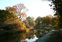 Autumn on the Wey and Arun Canal / A beautiful time of year for visiting the Wey and Arun Canal