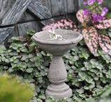 Fairy garden / by Bonnie Wilson