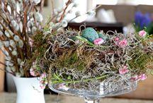 Celebrate: Spring Crafts