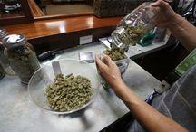 legalización global de la marihuana