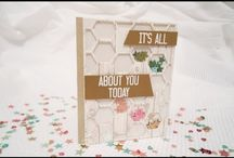 Shaker card(using Stampin up) Made by Jerim Dickins -WillowPiggy