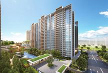 Sol Acres EC @ Choa Chu Kang Grove (Singapore New Launch Property) / Sol Acres EC is the latest new executive condo at Choa Chu Kang by MCL Land Singapore. Find out more - get e-brochure, prices & floor plans here!