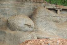 Idée Voyage au Sri Lanka