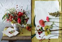 Still Life {flowers}