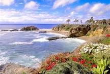 California the Beautiful / by Da Vinci Paint