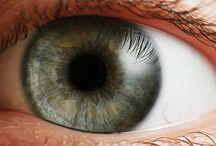 Eye / Blog post http://nicolegalpern.net/post/86802123081/eye