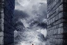 Photoshop, Illustrator, ...