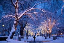 Christmas / Pictures that make me think of Christmas!