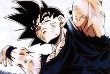 Goku Fondo