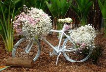 BICICLETAS  / Depois de nos dar muitas alegrias... A velha e boa bicicleta ainda pode ser útil, decorativa e muito divertida