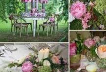 My wedding June 22  / by Angela Sosa