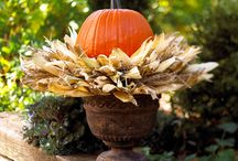 Fall decorating and fall holidays / by Faye Otero