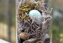 Birds nest decor